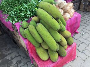 Artocarpus, jackfruit for green curry