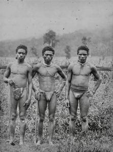 Vanuatu/ Pacific islander indentured labour QLD - 1